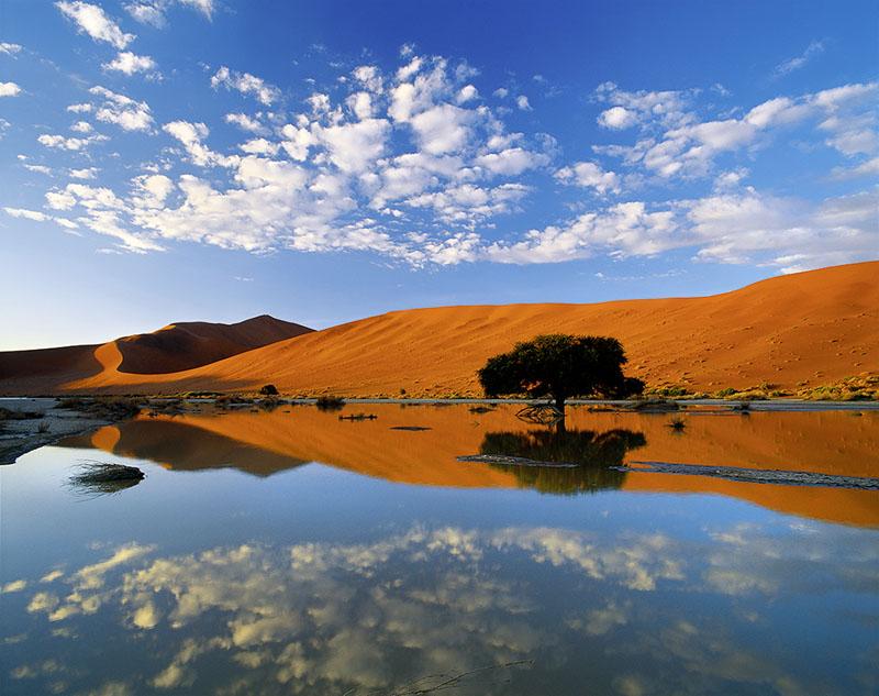 DESERT ILLUSION
