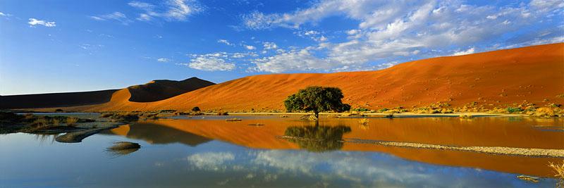 DESERT UTOPIA
